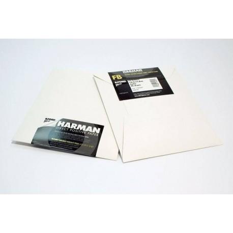 Фотобумага - Ilford Direct Positiv Paper FB 1K Ilford Direct Positiv Paper FB 1K 8x10 25 Sheets - быстрый заказ от производителя