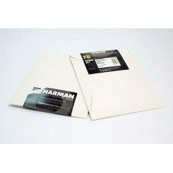 Фотобумага - Ilford Direct Positiv Paper FB 1K Ilford Direct Positiv Paper FB 1K 4x5 25 Sheets - быстрый заказ от производителя