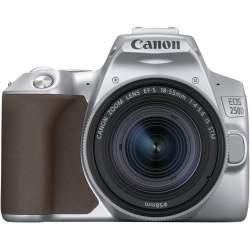 CanonEOS250D 18-55mmISSTMKitserebristiy