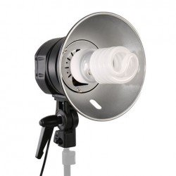 Fluorescent - Falcon Eyes Daylight Lamp Holder LHG-500 with ML-55 Daylight Lamp - quick order from manufacturer
