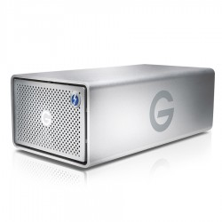 Hard drives & SSD - G-TECHNOLOGIES G-RAID Removable Thunderbolt 2 USB 3.0 HDD 12TB Silver - quick order from manufacturer