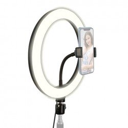 Ring Light - StudioKing RL10-USB LED dimmable bi-color ring light with smartphone holder - buy today in store and with delivery