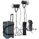 LED моноблоки - NANLITE FORZA 500 2 LIGHT KIT 12-2026-2KIT - быстрый заказ от производителя