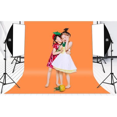 Fluorescējošās - Puluz Studio softbox 50x70cm, tripod, LED bulb 4 pcs PU5071EU - perc šodien veikalā un ar piegādi
