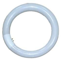 Studijas gaismu spuldzes - Falcon Eyes Ring dienas gaisma / day light 40W for RFL-3 Nr.291077 - perc šodien veikalā un ar piegādi