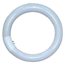 Запасные лампы - Falcon Eyes Ring Lamp 40W for RFL-3 - купить сегодня в магазине и с доставкой