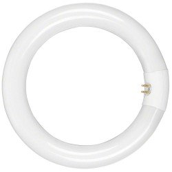 """Ring"" pastāvīgā gaisma - walimex Lamp for Beauty Ring Light, 22W 17069 - ātri pasūtīt no ražotāja"