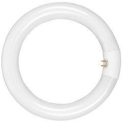 Кольцевая лампа LED - walimex in. Lamp 22W for Beauty Ring Light 90W - быстрый заказ от производителя