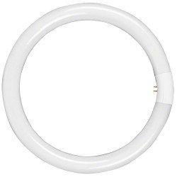 """Ring"" pastāvīgā gaisma - walimex Lamp for Beauty Ring Light, 28W 17070 - ātri pasūtīt no ražotāja"