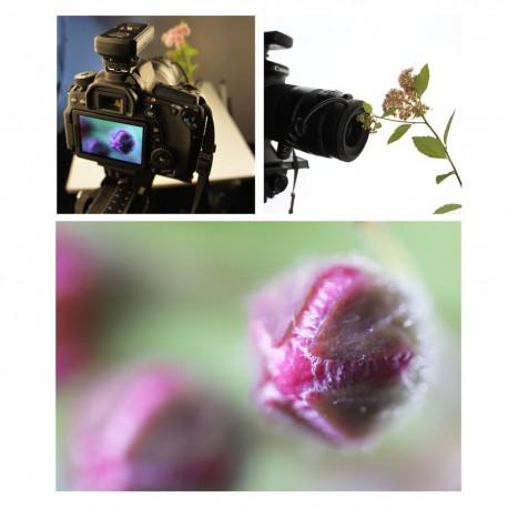 Макро - walimex pro Automatic Intermediate Ring for Canon E + EF-S - быстрый заказ от производителя