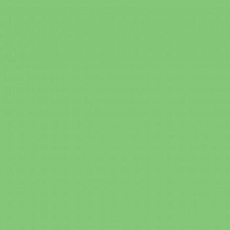 Foto foni - Falcon Eyes Background Paper 73 Summer Green 2,75 x 11 m - perc šodien veikalā un ar piegādi