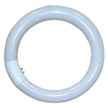 Запасные лампы - Falcon Eyes Ring Lamp 28W for RFL-2/RFL-3 - купить сегодня в магазине и с доставкой
