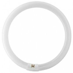 Replacement Lamps - Falcon Eyes Spare Ring Lamp for FLC-28 28W - quick order from manufacturer