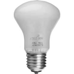 Studijas gaismu spuldzes - EL-23002 08 Elinchrom Modelling Lamp 100W 196V - perc šodien veikalā un ar piegādi