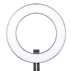 """""""Ring"""" Continious Light - Falcon Eyes Bi-Color LED Ring Lamp Dimmable DVR-384DVC on 230V - quick order from manufacturer"""