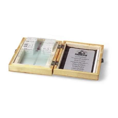 Микроскопы - Konus Preparation Set Teaching Biology 1 (10 Pcs) - быстрый заказ от производителя