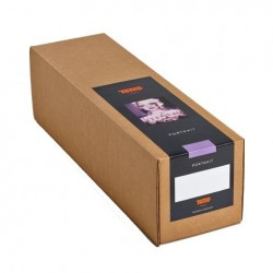 Photo paper for pinting - Tecco Inkjet Paper Premium Silk Raster PSR290 127 cm x 25 m - quick order from manufacturer