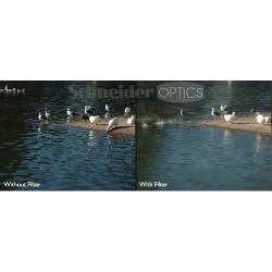 Objektīvu filtri - B+W Filter ND 101M 46mm MRC - ātri pasūtīt no ražotāja