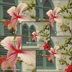 Макро - B+W Filter NL 4 Close-Up lens +4 E 60 - быстрый заказ от производителя